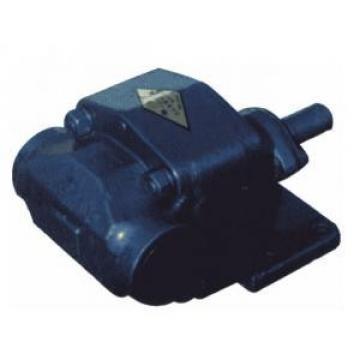 IPH-4B-25-20 Zahnradpumpen