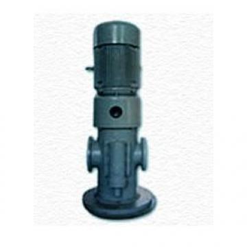MFP100/1.7-2-0.75-10 Hydraulikpumpe auf Lager
