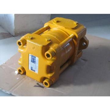 IPH-66B-125-125-11 Zahnradpumpen